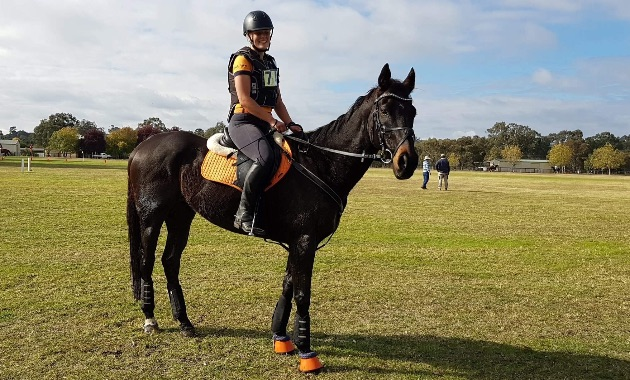 Charles Sturt University student accepts prestigious international equine research internship