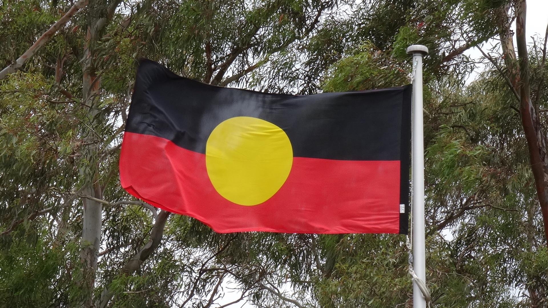 Charles Sturt University and Wiradjuri Elders win Global Citizenship