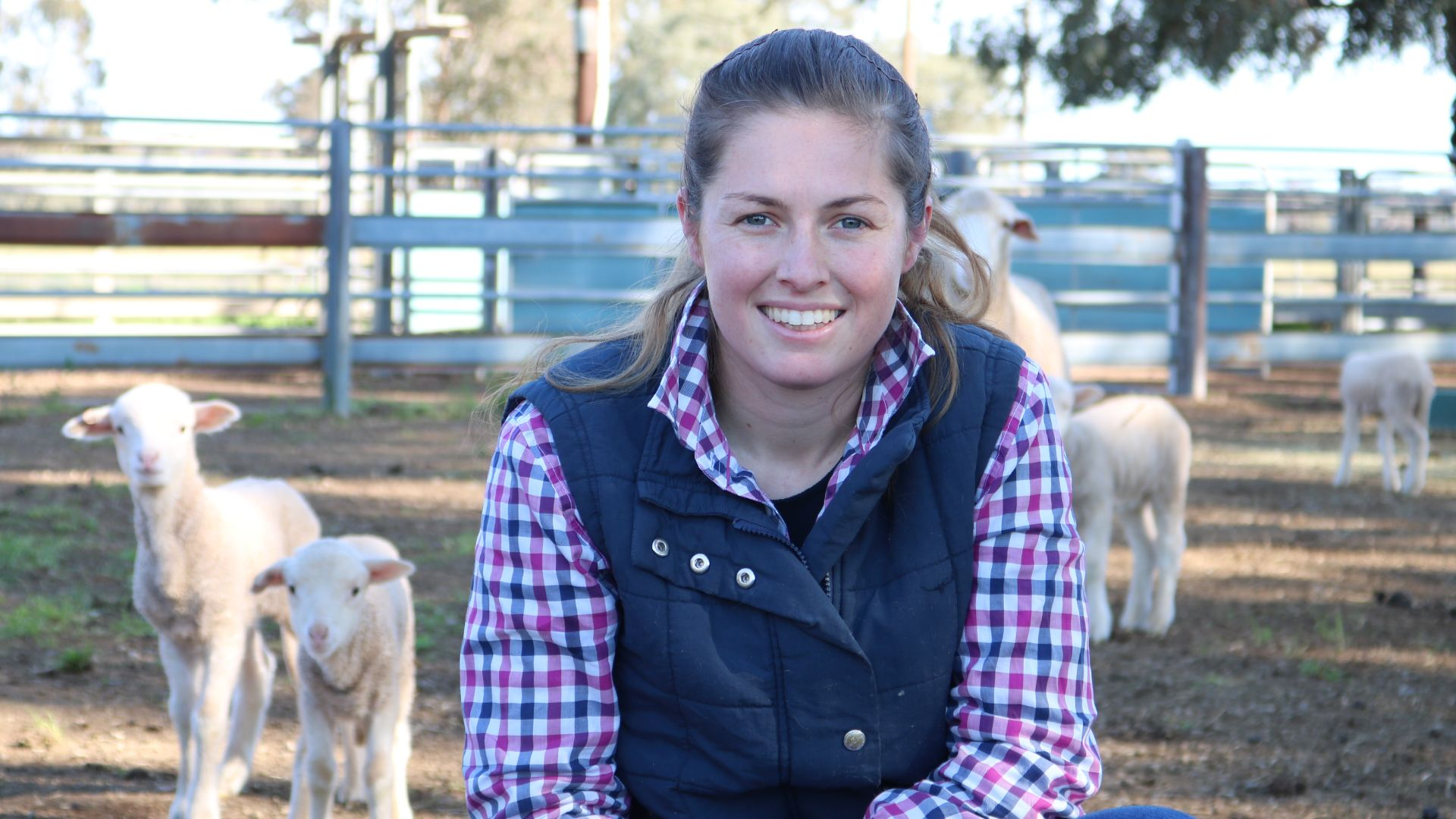 Charles Sturt PhD student's survey aimed at boosting lamb survival rate