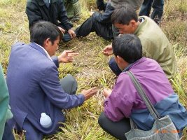 Farmers and staff discuss fodder management