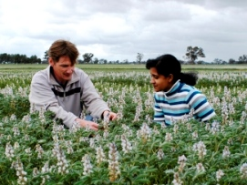 Man and a woman inspecting flower heads in a crop