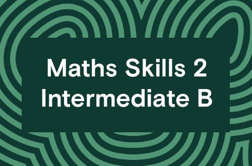 Maths Skills 2 - Intermediate B