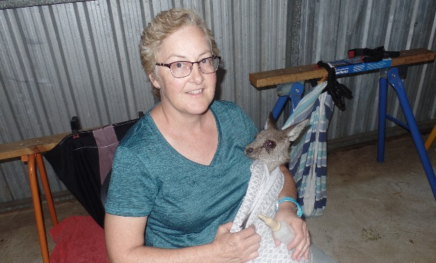 Dr Joanne Connolly with kangaroo at sanctuary
