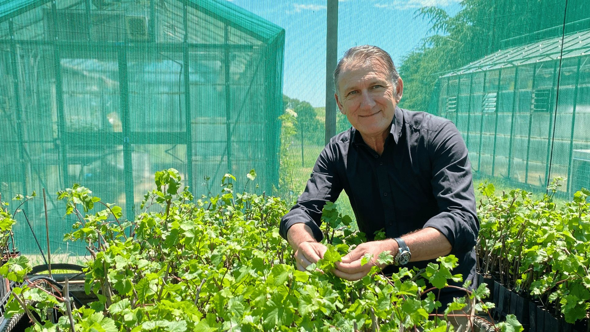 Agriculture research project wins trans-Tasman award