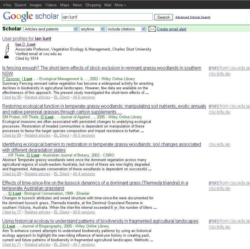 Screen grab of Google Scholar showing a listing of search results