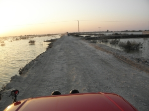 A view of flooded farmland east of Mirpurkhas, Sindh, taken in late January 2012, four months after the finish of the monsoon.