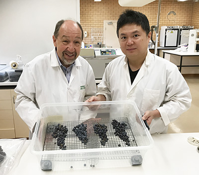Professor Chris Steel and Dr Yu Qiu