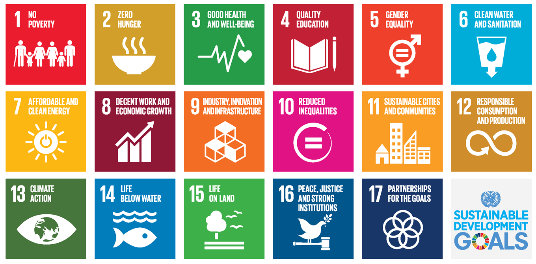 17 Sustainable Development Goals Icons postcard