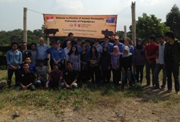 CSU students with members of the cattle buffalo club at Padjadjaran University Faculty of Animal Science photo courtesy Mr Elliott O'Farrell