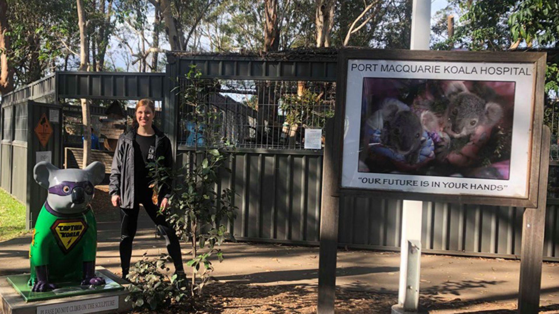 Students' ideas help Koala Hospital in Port Macquarie