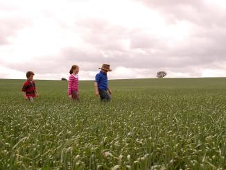 Three children walking through a paddock