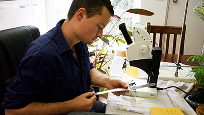 Honours student Jordan Bathgate set up the microscope on the kitchen table to keep working
