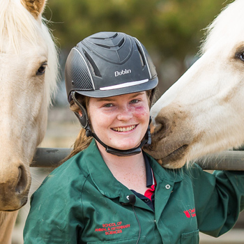 Megan Wilson – Bachelor of Equine Science (with specialisation)