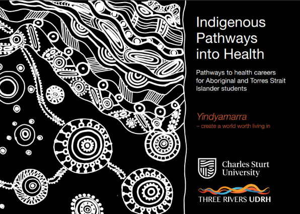 Indigenous Pathways into Health Brochure