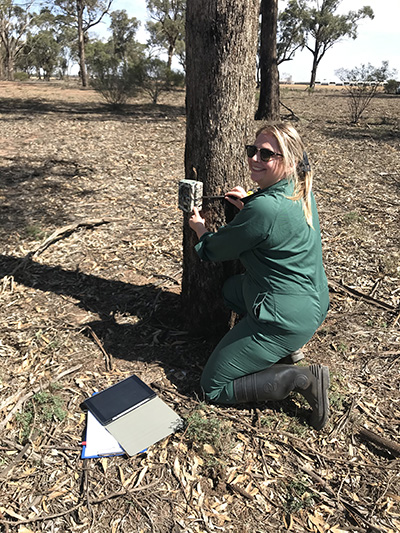Tamille Barret installing a camera trap as part of her work