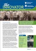 Innovator Winter 2013